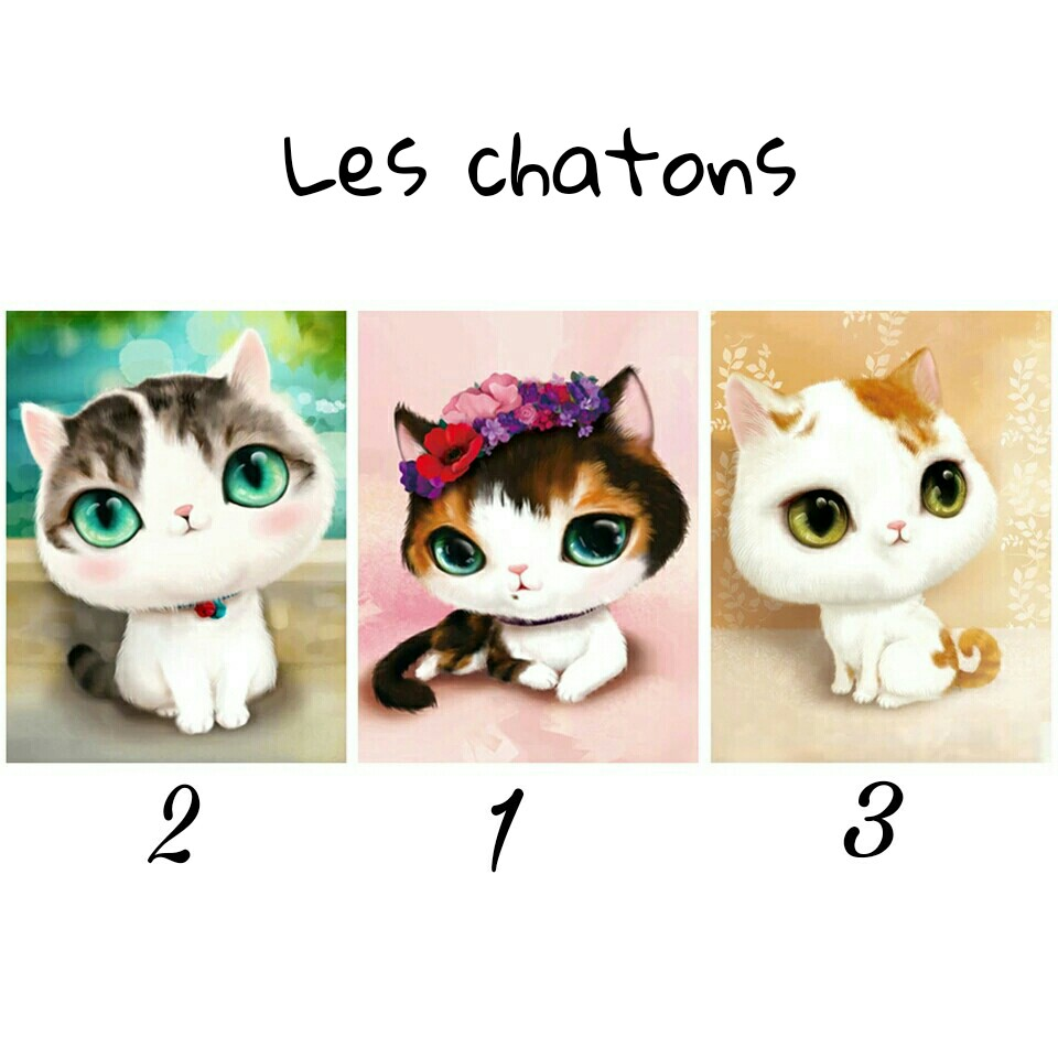 Broderie diamant Chaton - 30x40 cm - partielle - diamants ronds